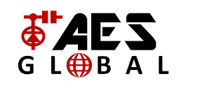 Video Door Entry systems from AES Global